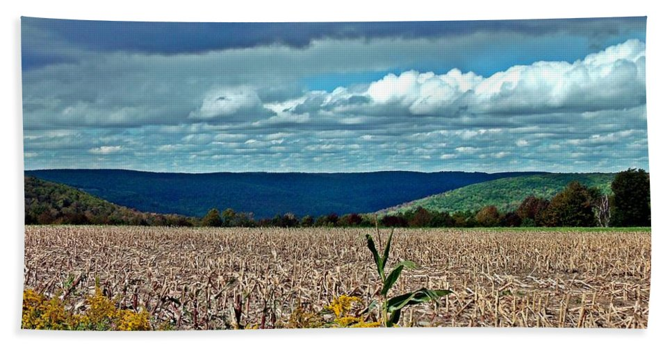 Cornfield Hand Towel featuring the photograph Done For Another Season by Christian Mattison
