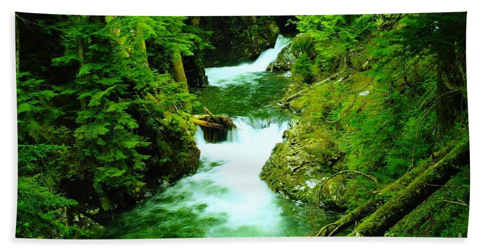 Water Bath Sheet featuring the photograph Double Falls by Jeff Swan
