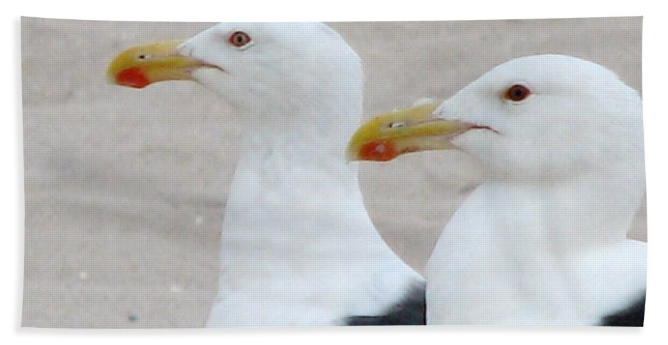 Gull Hand Towel featuring the photograph Double Trouble by Art Dingo