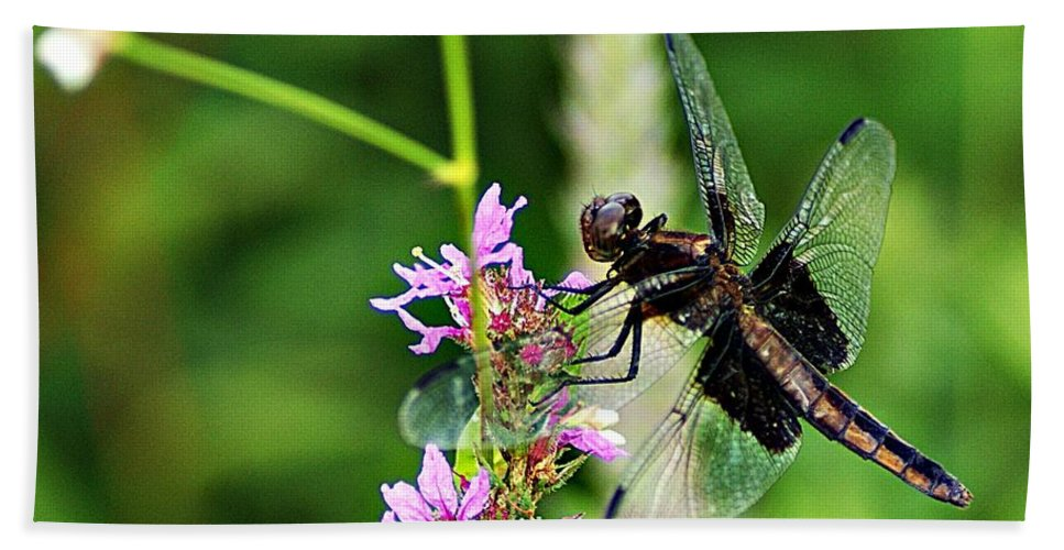 Dragonfly Bath Sheet featuring the photograph Dragonfly 2 by Joe Faherty