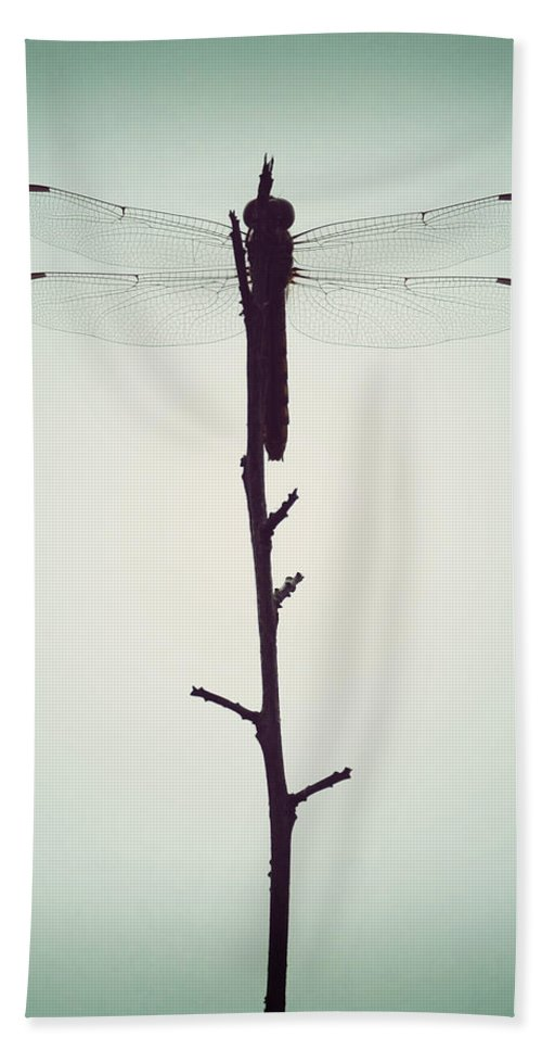 Florida Hand Towel featuring the photograph Dragonfly by Chris Andruskiewicz