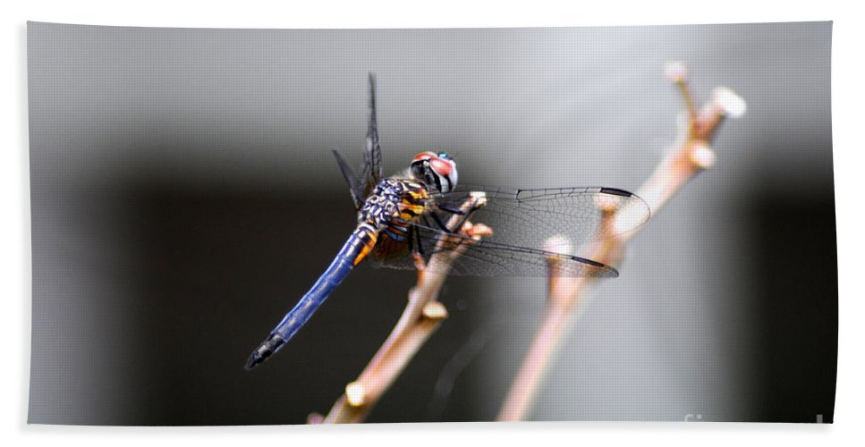 Dragonfly Bath Sheet featuring the photograph Dragonfly by Cindy Roesinger