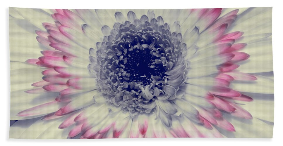 Flower Bath Sheet featuring the photograph Dreamy Gerbera by Jim And Emily Bush