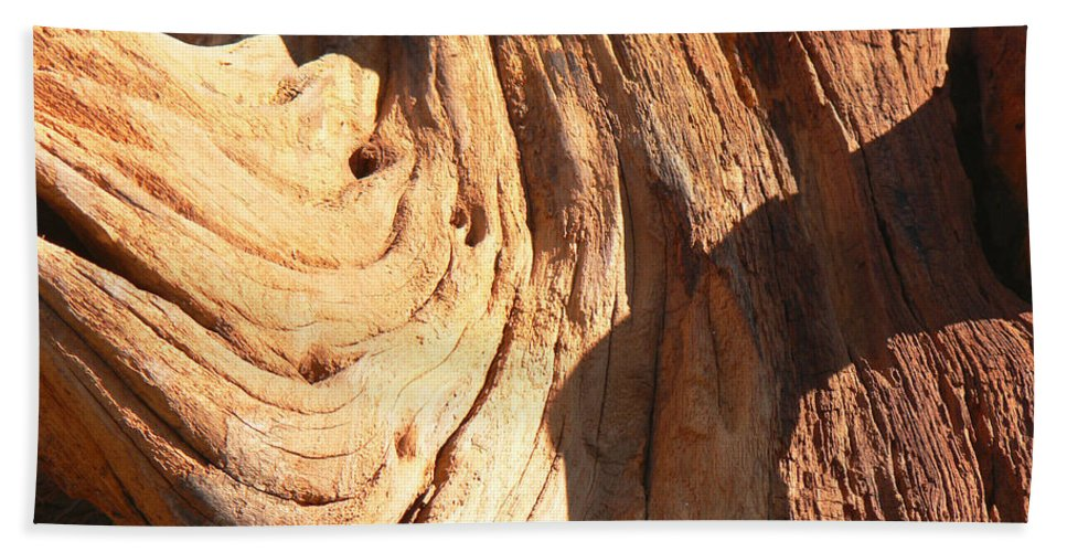 Tn Hand Towel featuring the photograph Driftwood 1 by Ericamaxine Price