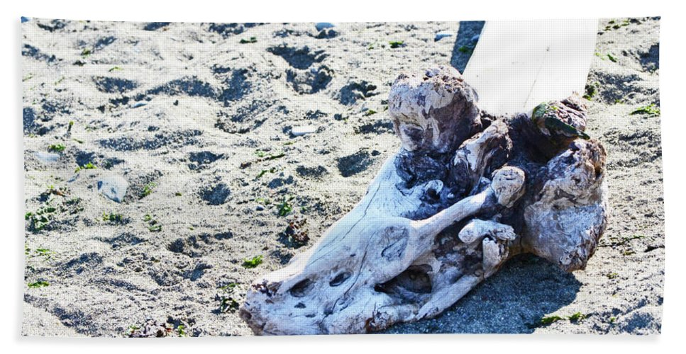 British Columbia Hand Towel featuring the photograph Driftwood by Traci Cottingham