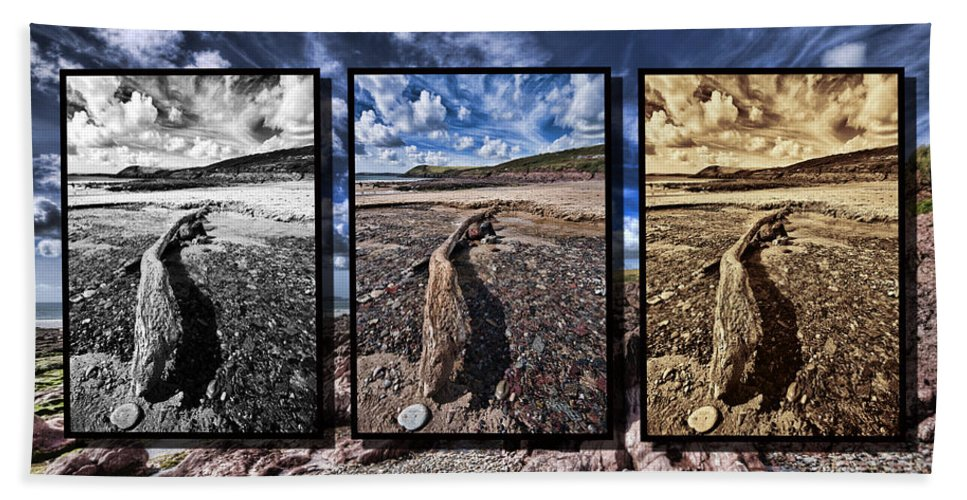 Manorbier Triptych Bath Sheet featuring the photograph Driftwood Triptych by Steve Purnell