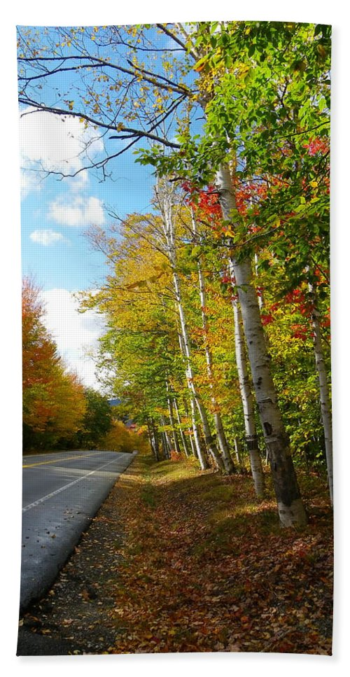 Birch Tree Bath Sheet featuring the photograph Driving Though The Birches by Sarah Lamoureux