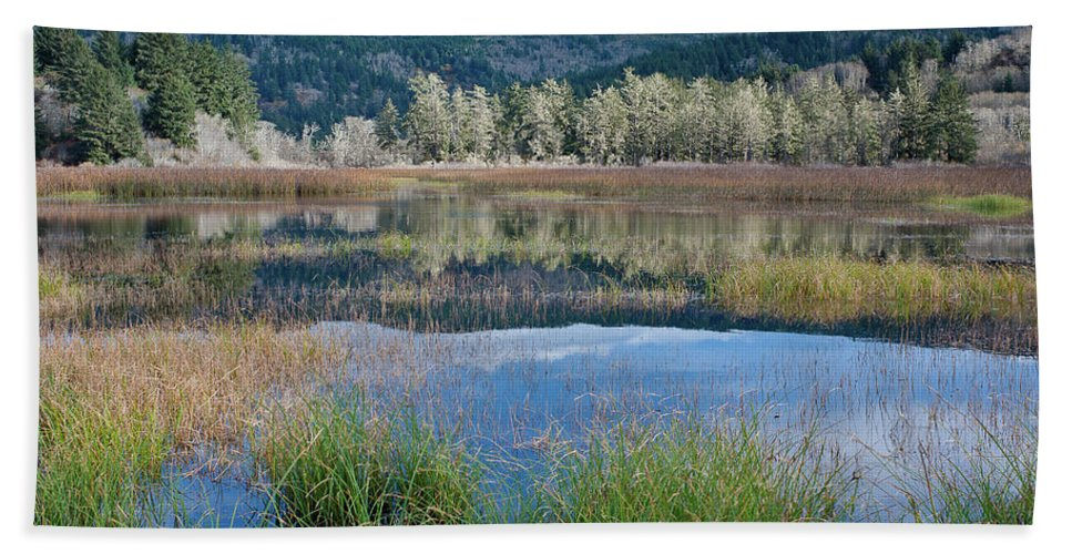 Dry Lagoon Bath Sheet featuring the photograph Dry Lagoon Splendor by Greg Nyquist
