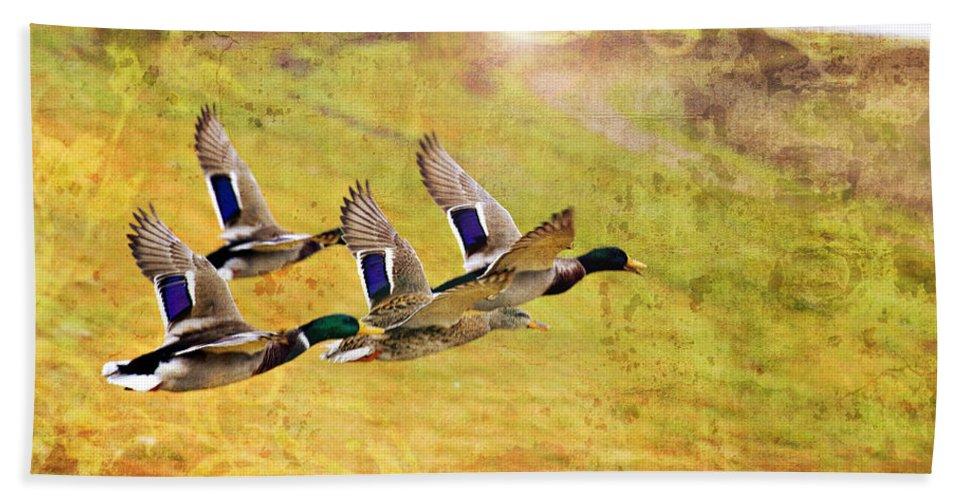 Ducks In Flight Bath Sheet featuring the photograph Ducks In Flight V4 by Douglas Barnard
