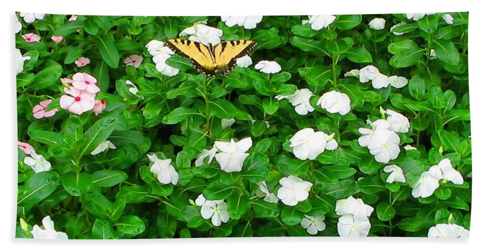 Butterfly Hand Towel featuring the photograph Eastern Tiger Swallowtail by April Patterson
