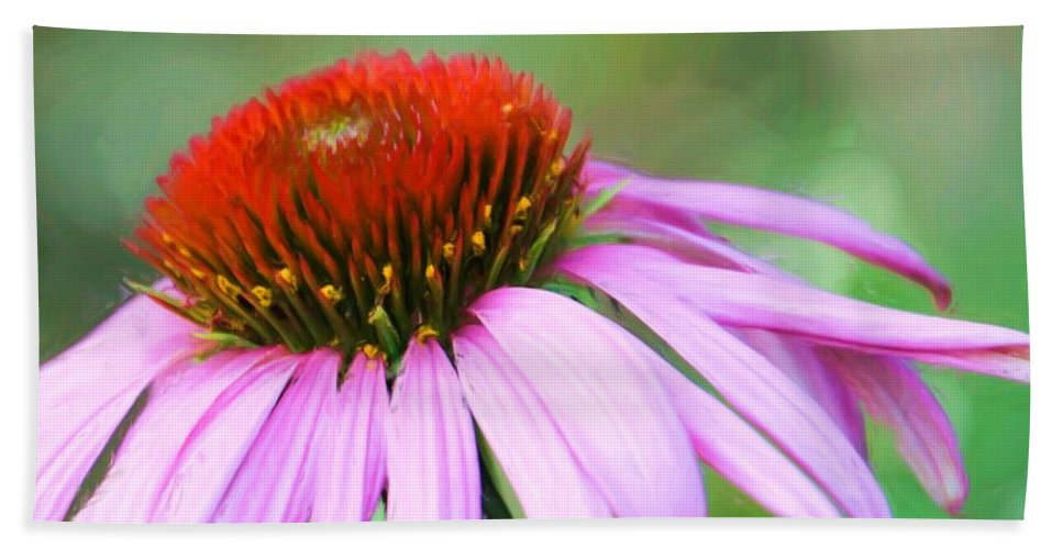Echinacea Hand Towel featuring the photograph Echinacea by Heidi Smith