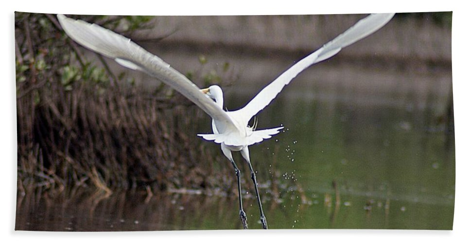 Egret Hand Towel featuring the photograph Egret In Flight by Joe Faherty