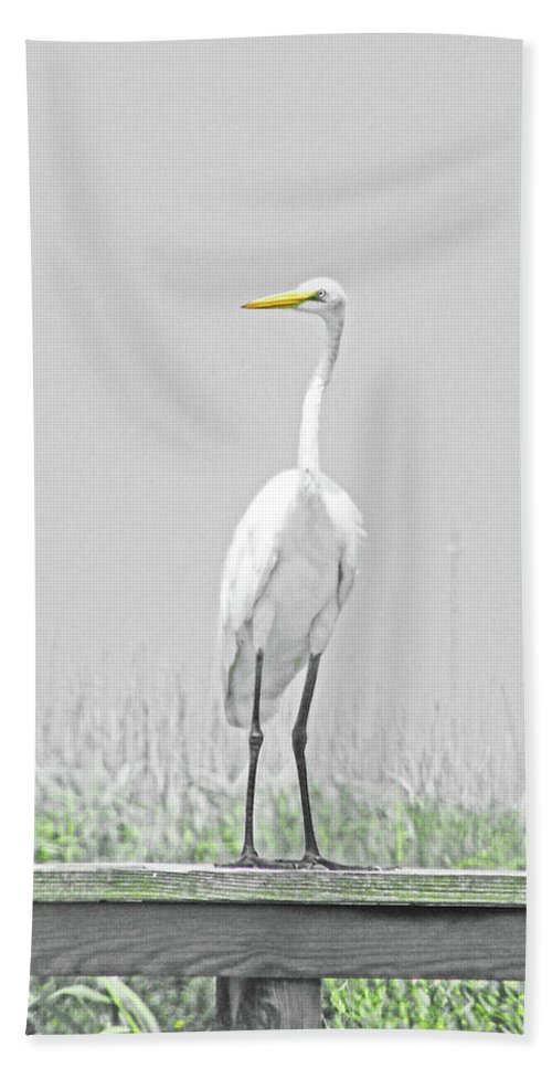 Bath Sheet featuring the digital art Egret Rockefeller Wma Louisiana by Lizi Beard-Ward