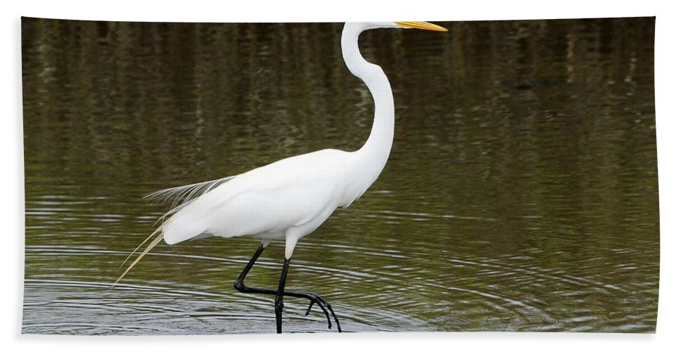 Egret Bath Sheet featuring the photograph Figure Four by Al Powell Photography USA