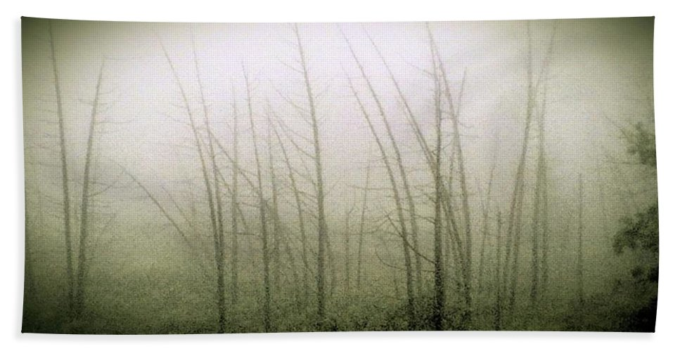 Landscape Hand Towel featuring the photograph Emerson Bog At Dawn by Mike Greco