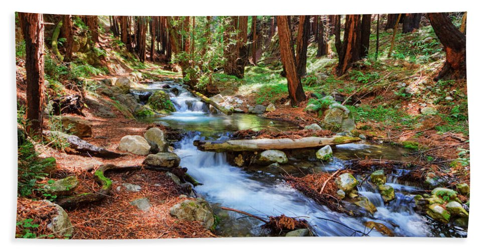 Stream Bath Sheet featuring the photograph Enchanted Forest by Beth Sargent