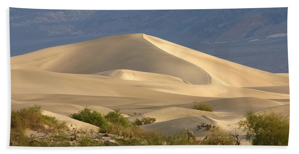 Evening Dune Bath Sheet featuring the photograph Evening Dune by Wes and Dotty Weber