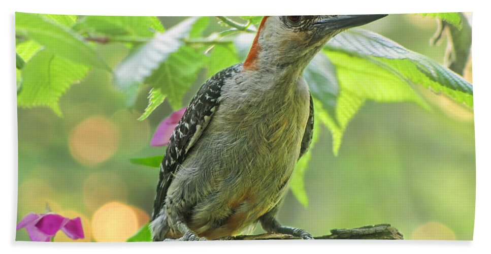 Nature Bath Sheet featuring the photograph Evening Woodpecker by Debbie Portwood
