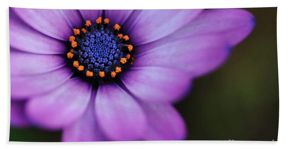Photography Bath Sheet featuring the photograph Eye Of The Daisy by Kaye Menner