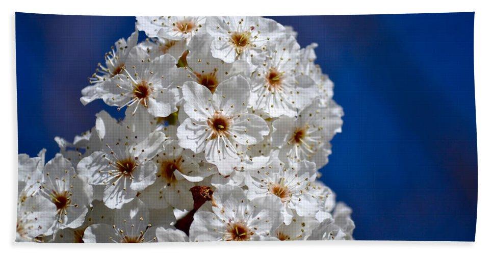Macro Photography Bath Sheet featuring the photograph Eyelashes by Bill Owen