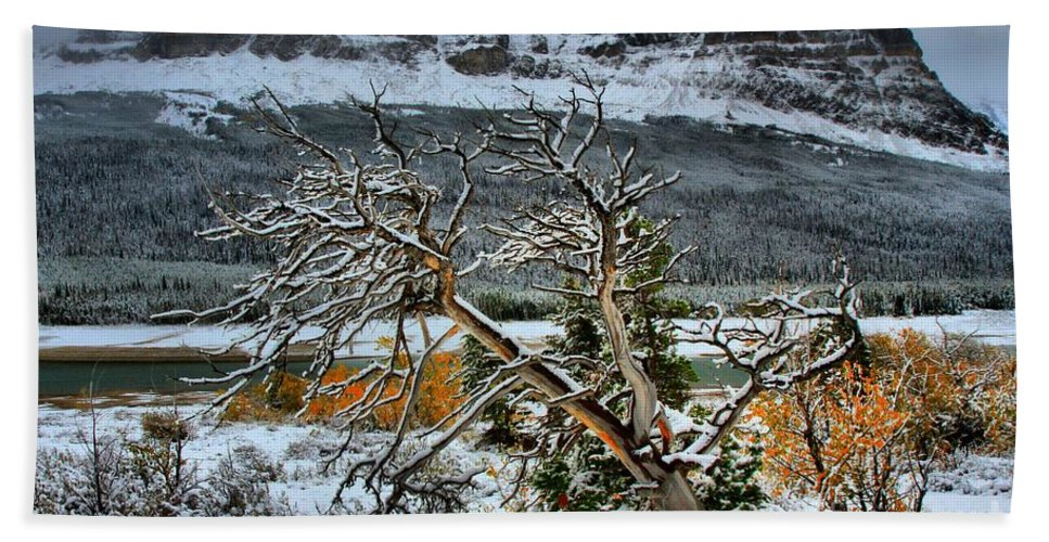 Glacier National Park Hand Towel featuring the photograph Fading Colors by Adam Jewell
