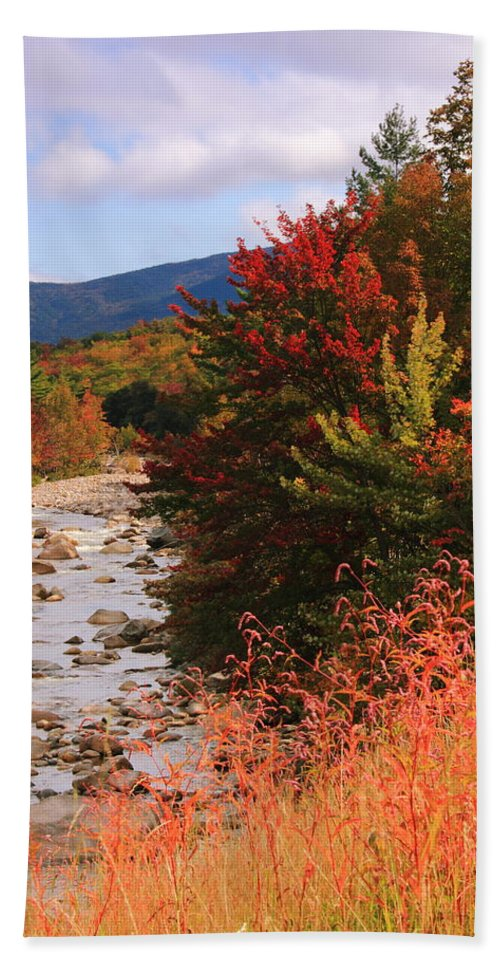 Fall Hand Towel featuring the photograph Fall Color In The White Mountains by Roupen Baker