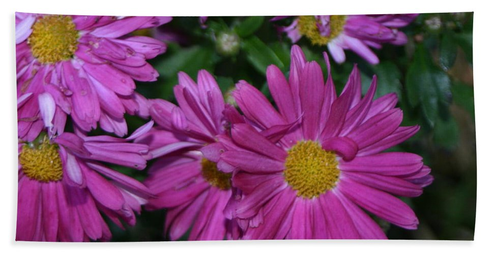 Fall Bath Sheet featuring the photograph Fall Flowers In Bloom by Leann DeBord