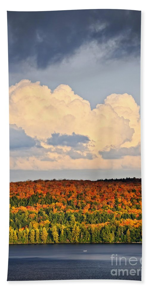 Autumn Bath Sheet featuring the photograph Fall Forest And Lake by Elena Elisseeva
