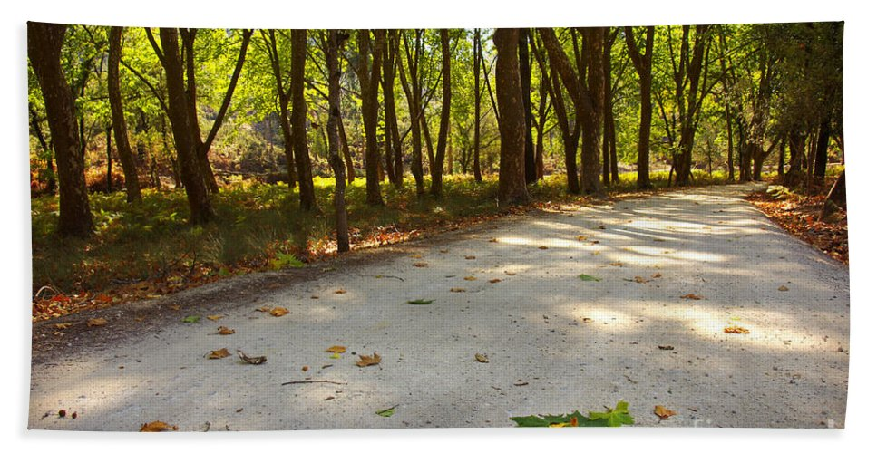 Autumn Hand Towel featuring the photograph Fall In The Park by Carlos Caetano