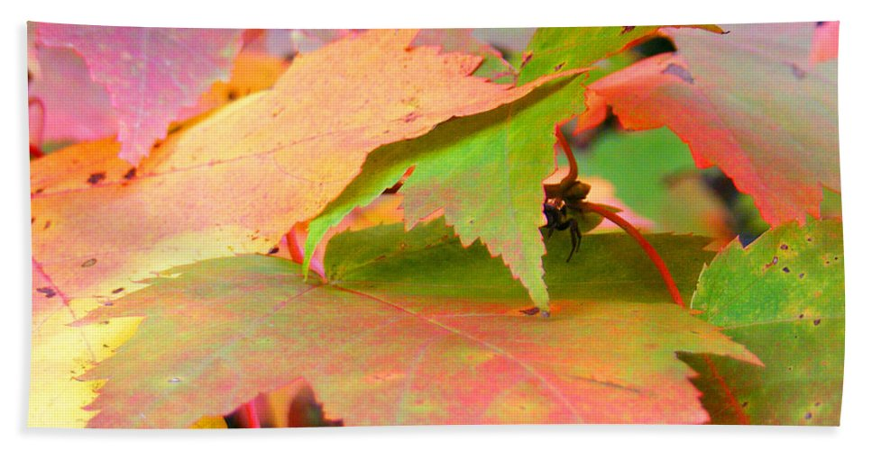 Maple Leaves Bath Sheet featuring the photograph Fall Maple Leaves by Duane McCullough