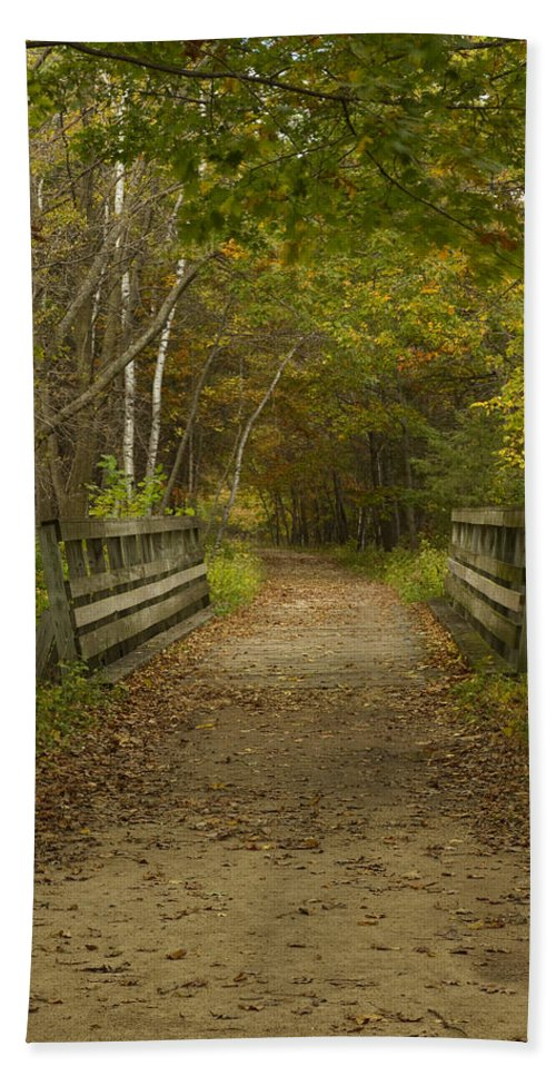 Trail Bath Sheet featuring the photograph Fall Trail Scene 24 by John Brueske