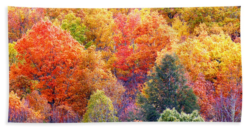 Fall Hand Towel featuring the photograph Fall Trees 3 by Duane McCullough