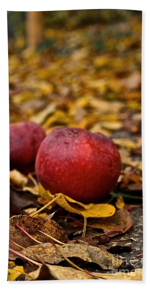 Outdoors Hand Towel featuring the photograph Fallen Fruit by Susan Herber