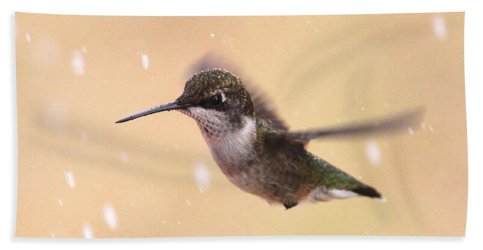 Hummingbird Bath Sheet featuring the photograph Falling On My Head by Travis Truelove