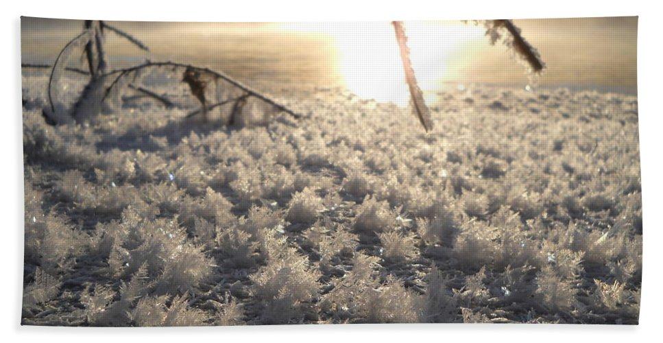 Fractals Bath Sheet featuring the photograph Fanciful Frosty Fractal Forest by Kent Lorentzen