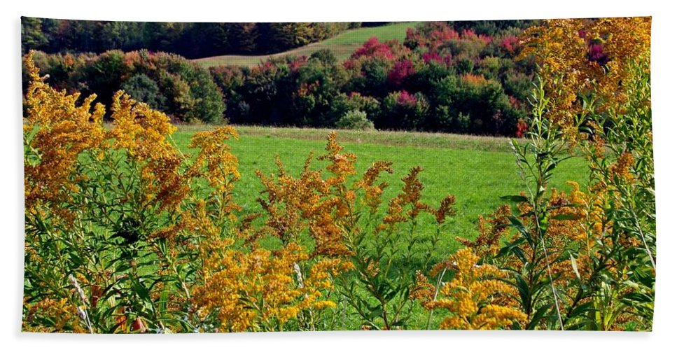 Goldenrod Hand Towel featuring the photograph Feast Of Autumn by Christian Mattison
