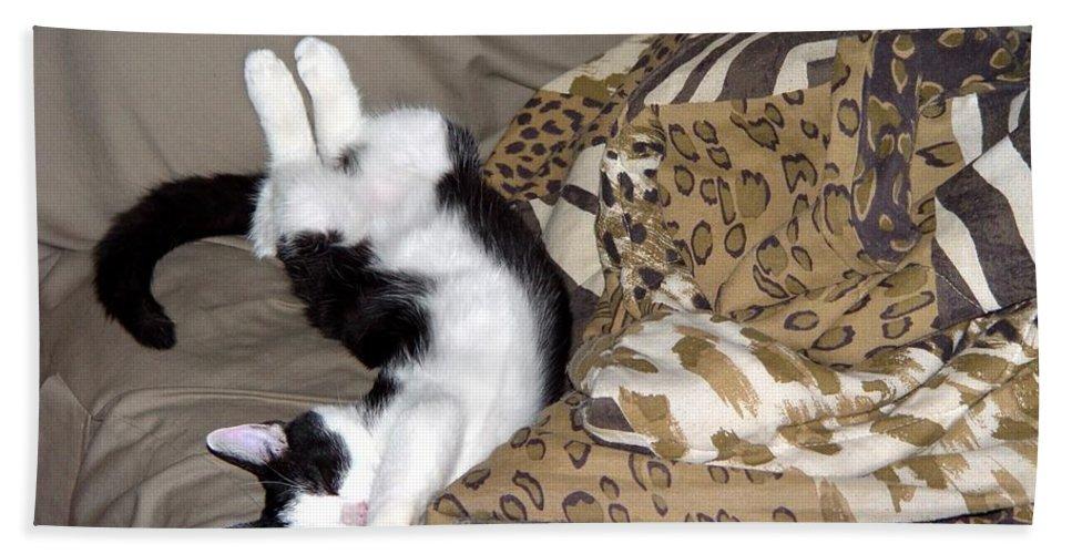 Cat Bath Sheet featuring the digital art Felis Catus by Barkley Simpson