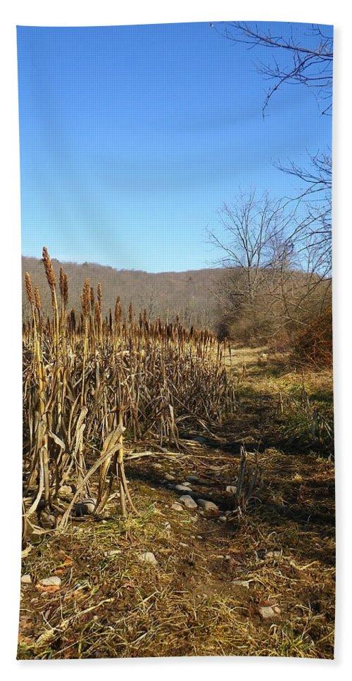 Corn Bath Sheet featuring the photograph Field Of Corn by Anna Ruzsan