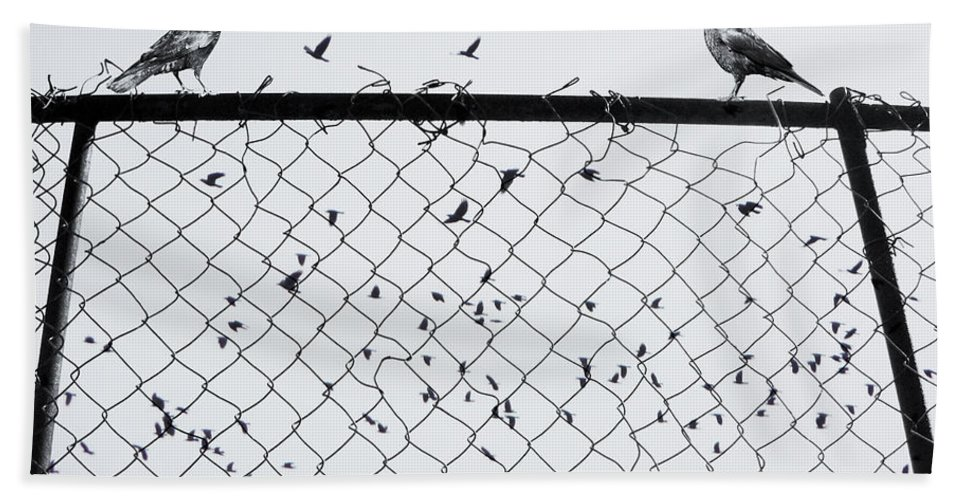 Birds Hand Towel featuring the photograph Fight Among Our Wings by The Artist Project