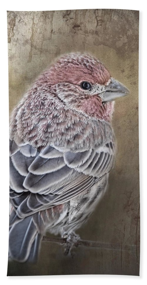 Nature Bath Towel featuring the photograph Finch Low Saturation by Debbie Portwood