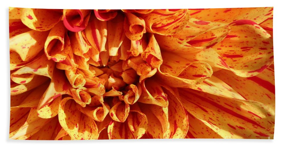 Yellow Flower Hand Towel featuring the photograph Flamenco by Matthew Wilson