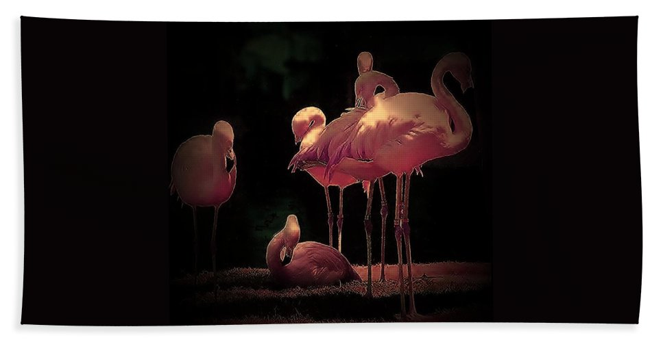 Hand Towel featuring the photograph Flamingo 3 by Andrew Drozdowicz