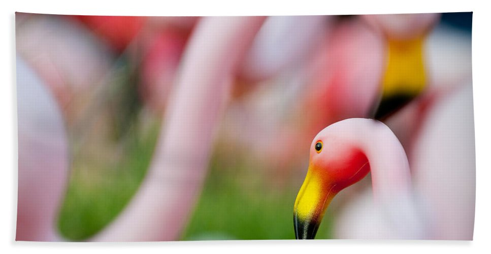 Austin Bath Sheet featuring the photograph Flamingo 4 by Sean Wray