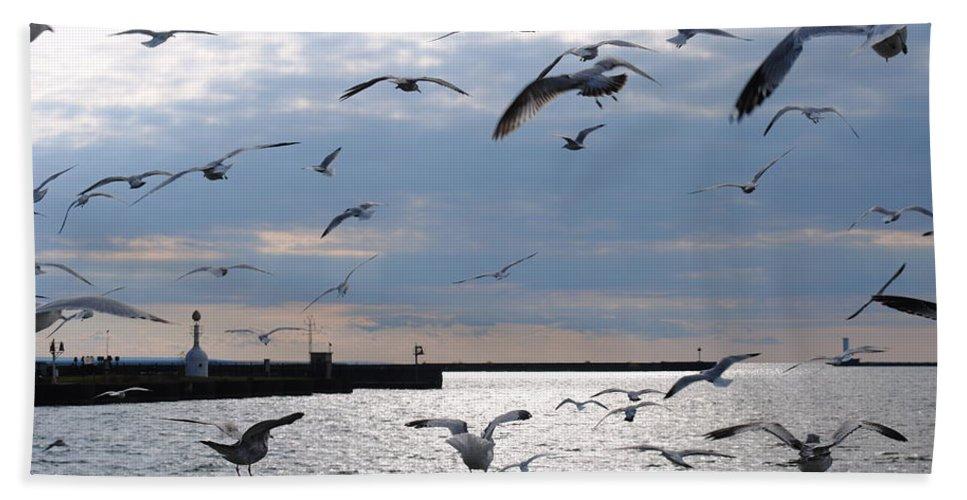 Bath Sheet featuring the photograph Flocking Gulls by Michael Frank Jr