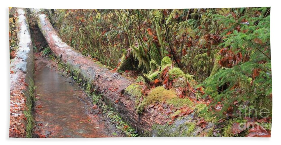 Hoh Rainforest Hand Towel featuring the photograph Flooded Bridge by Adam Jewell