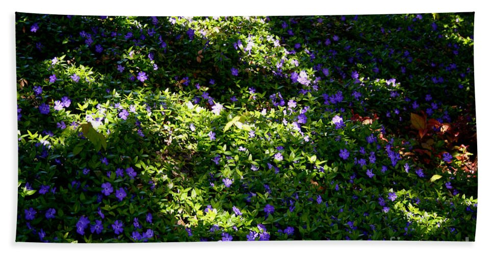 Outdoors Bath Sheet featuring the photograph Floral Carpet by Susan Herber