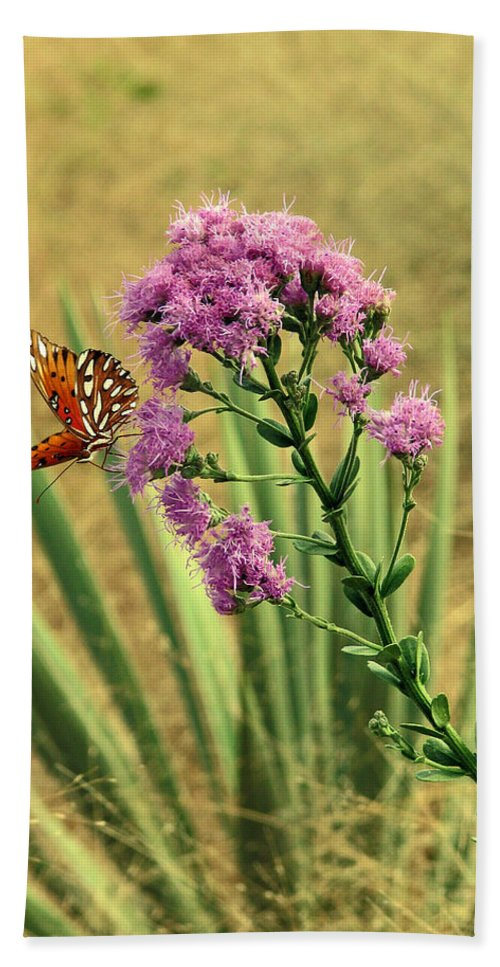 Nature Bath Sheet featuring the photograph Florida Paintbrush by Peg Urban