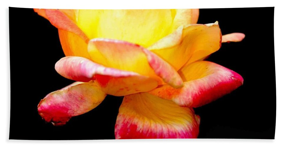 Yellow Flower Hand Towel featuring the photograph Flower Glow by Optical Playground By MP Ray