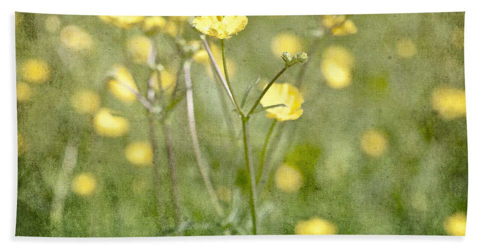 Flower Hand Towel featuring the photograph Flower Of A Buttercup In A Sea Of Yellow Flowers by Joana Kruse