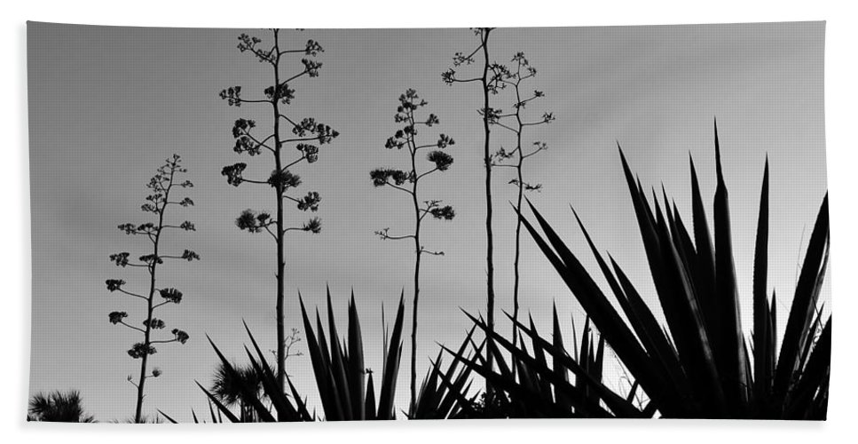 Fine Art Photography Hand Towel featuring the photograph Flowering Agaves by David Lee Thompson